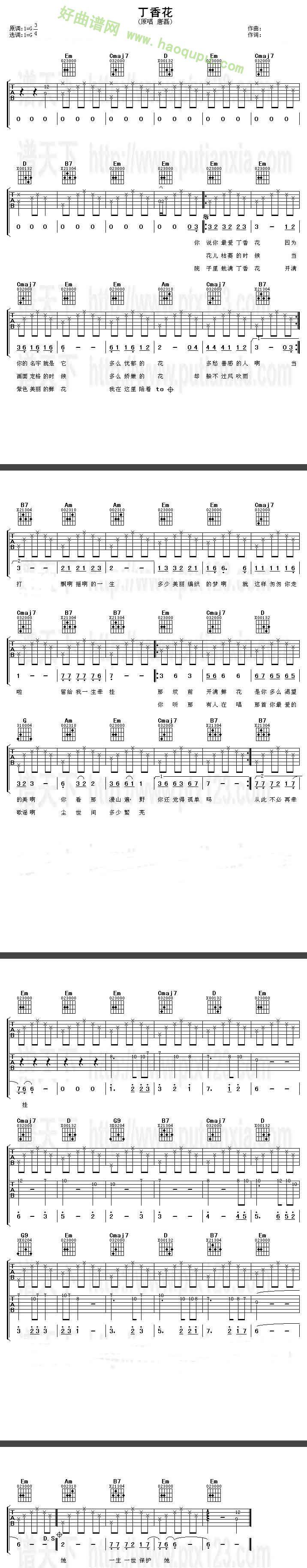 《丁香花》吉他谱