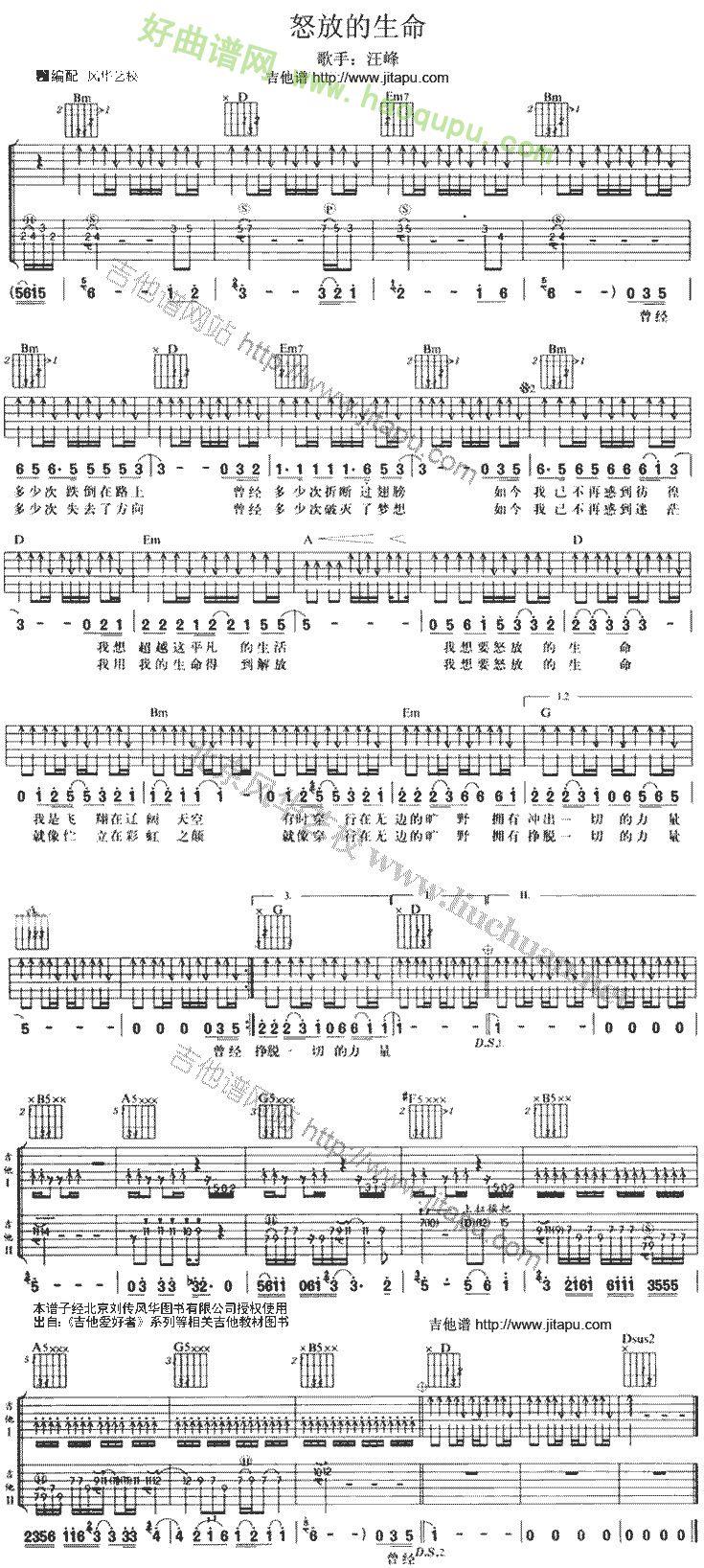 《怒放的生命》吉他谱