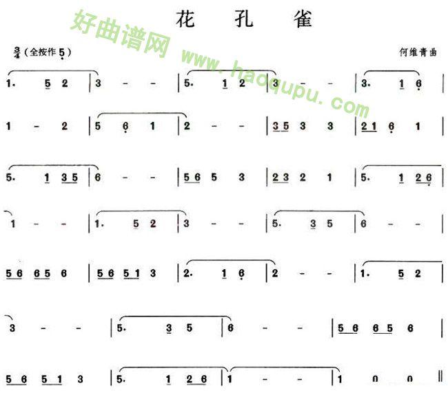 花孔雀 葫芦丝曲谱