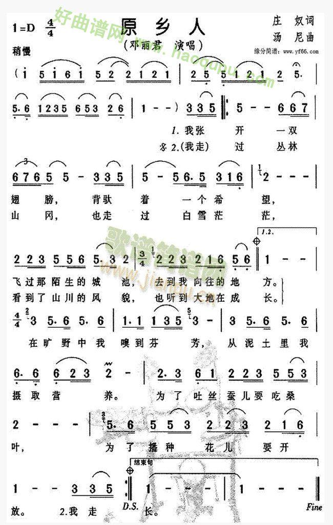 《原乡人》(邓丽君演唱)歌曲简谱