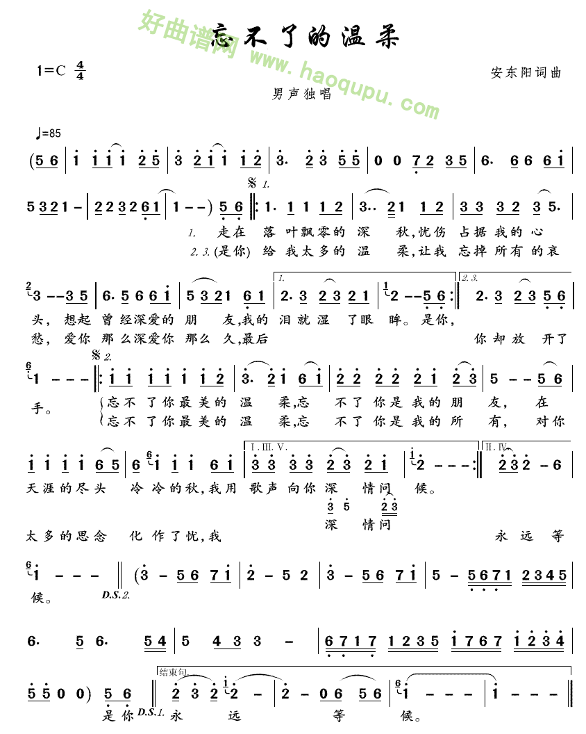 《忘不了的温柔》(安东阳演唱) 歌曲简谱第1张