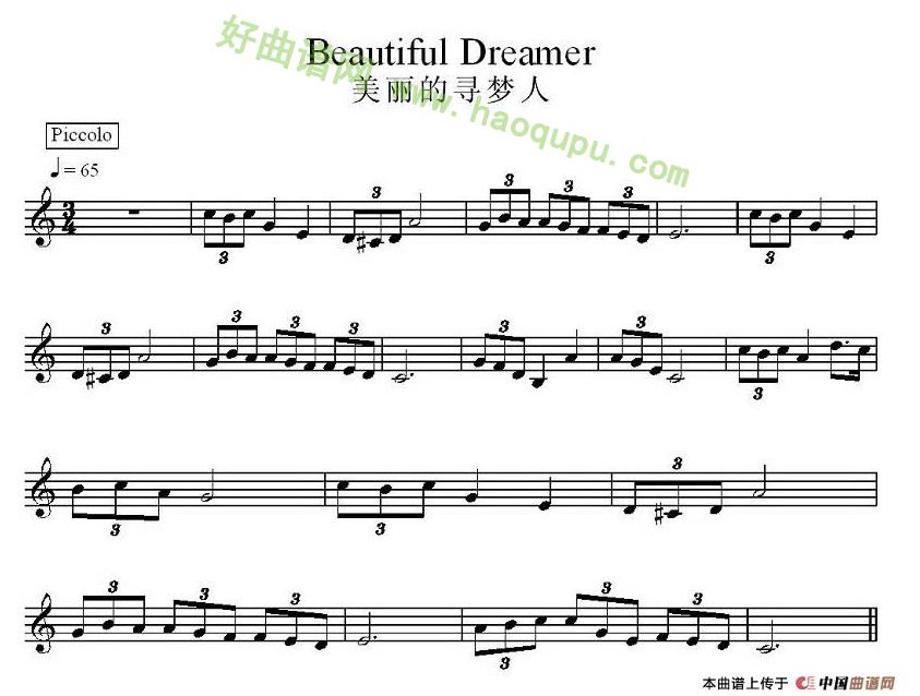 丽的 寻梦人 电子琴 简谱 电子琴 曲谱