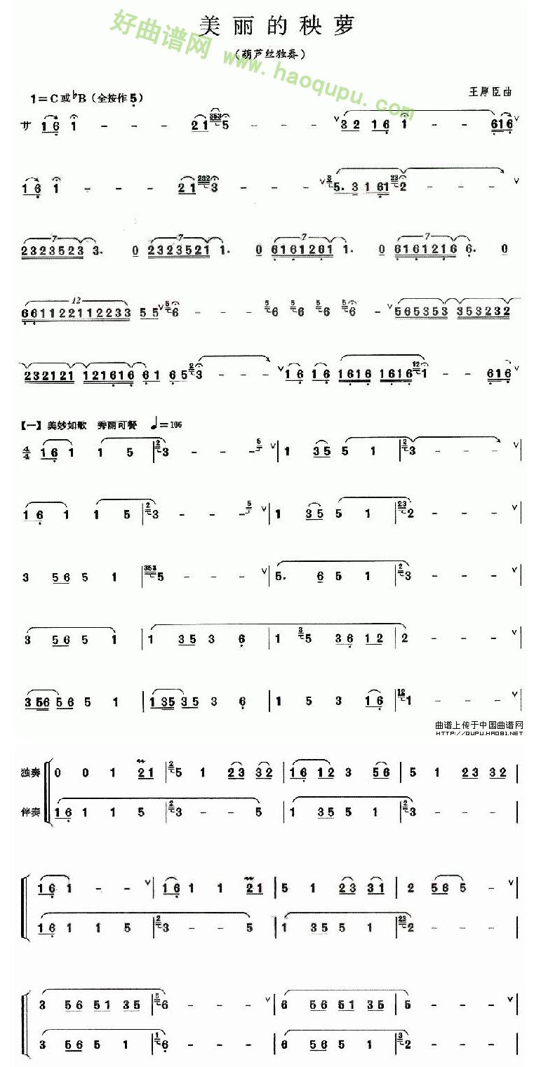 《美丽的秧萝》 葫芦丝曲谱第1张