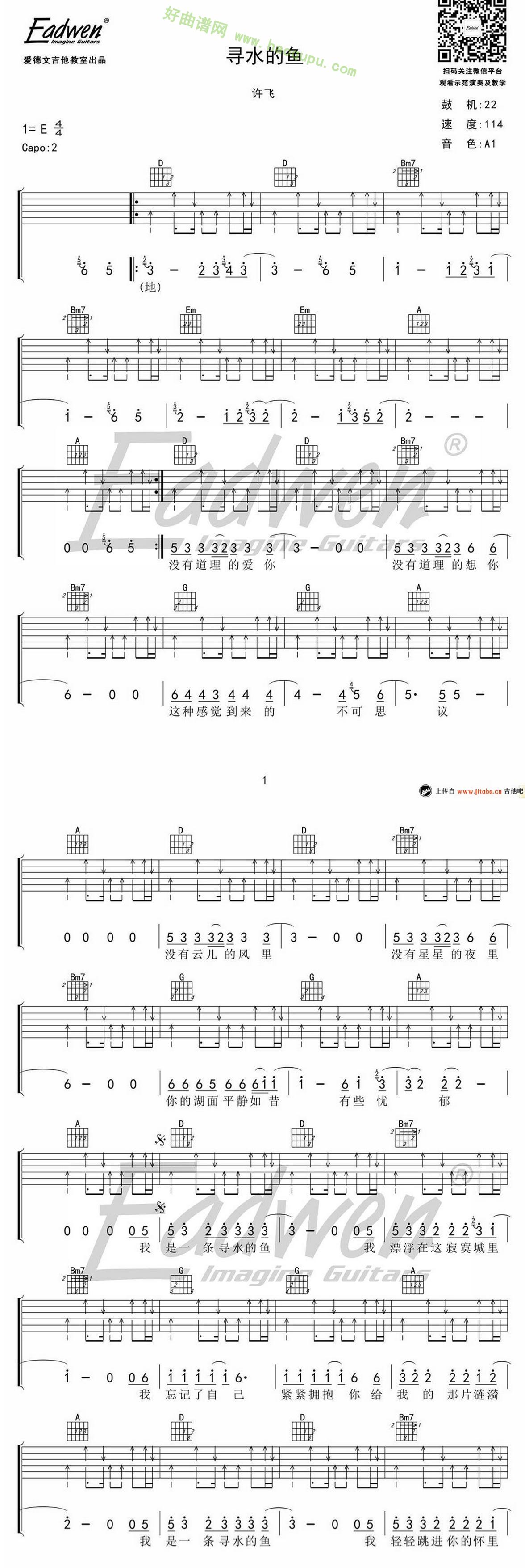 《寻水的鱼》(许飞演唱)吉他谱第1张